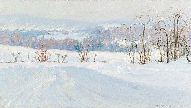 Disig vintersol