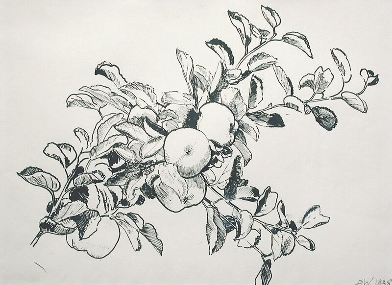 Gren med epler 1938
