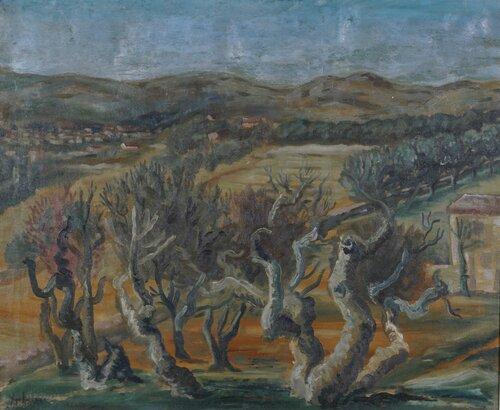Gamle oliventrær