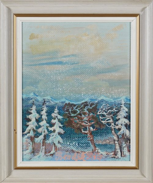 Fjelllandskap, vinter