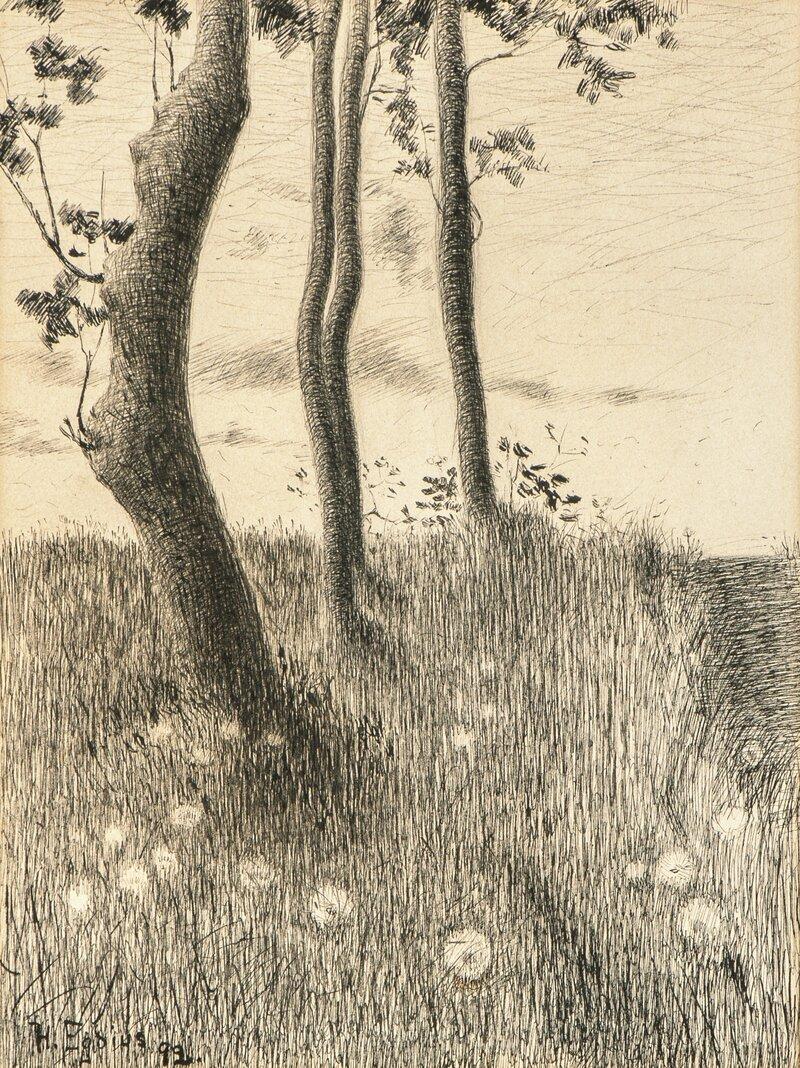 Landskap 1892