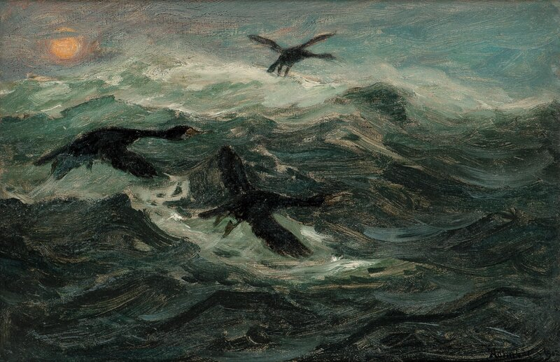 Flyvende skarv 1902