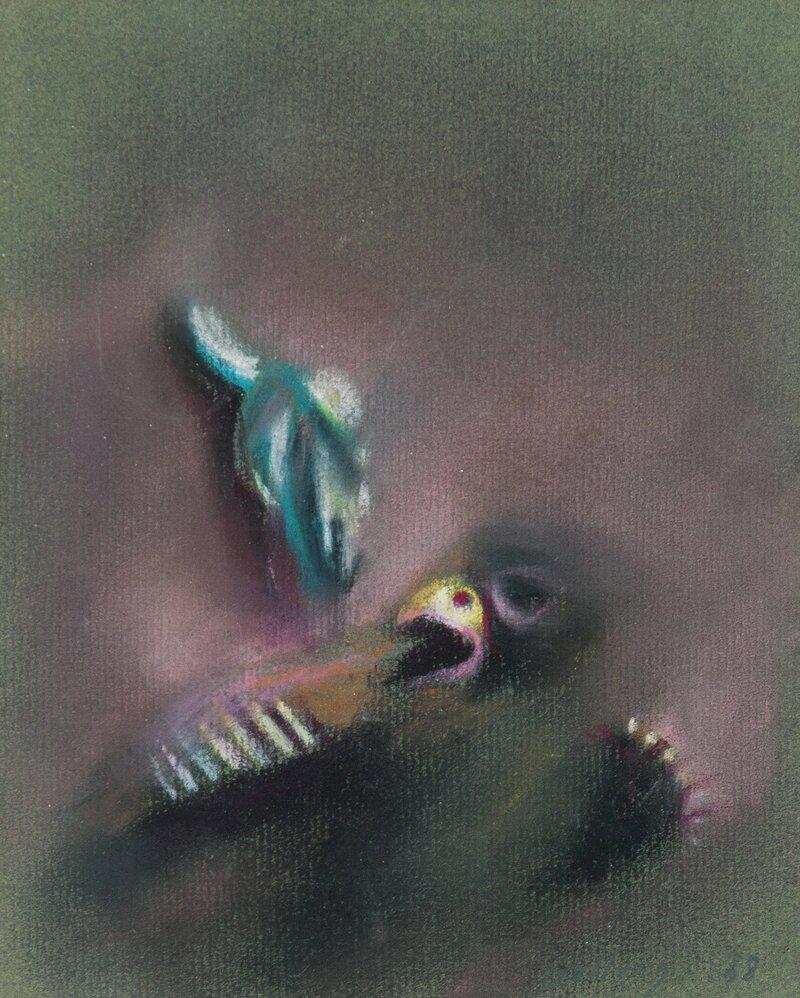 Fuglunge og oksekranie 1988