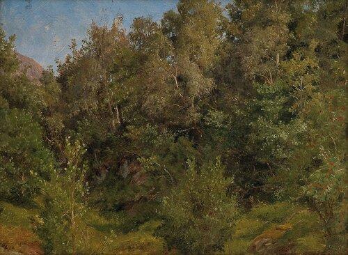Studie av løvtrær 1858