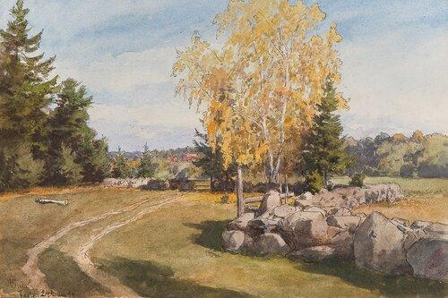 Fra Feste 1894