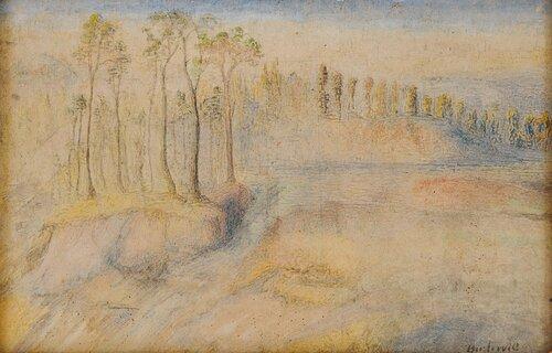 Landskap med skog og vann