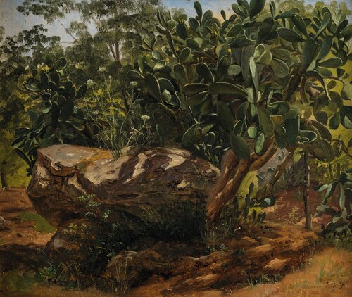Study of Leaves from Palermo 1833