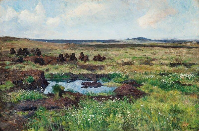 Torvmyr 1898
