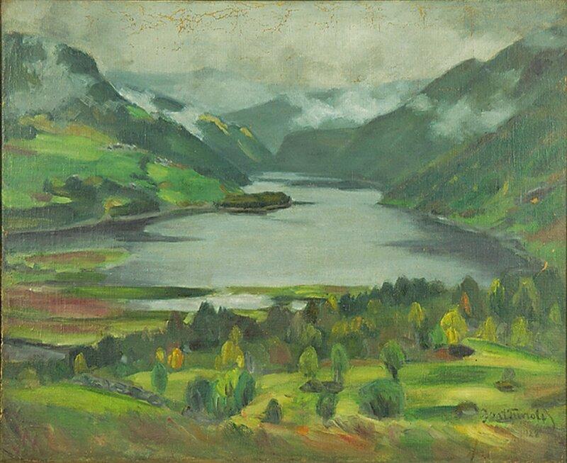 Landskap i regnvær Morkdalen 1928