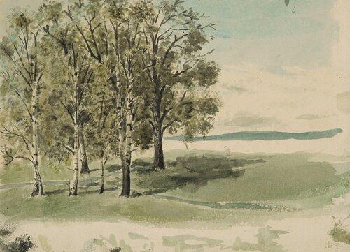 From Grüner's Garden