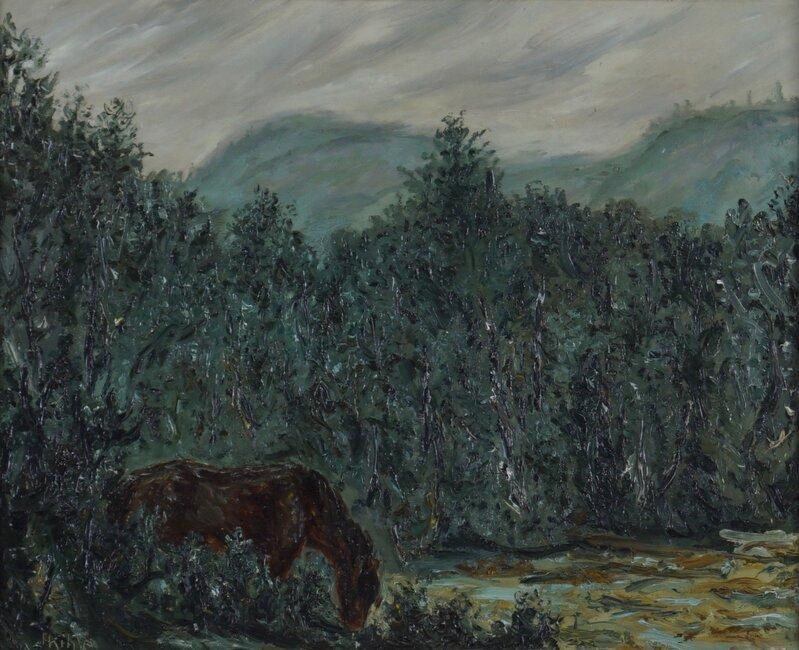 Kløvhest i regnvær, Telemark