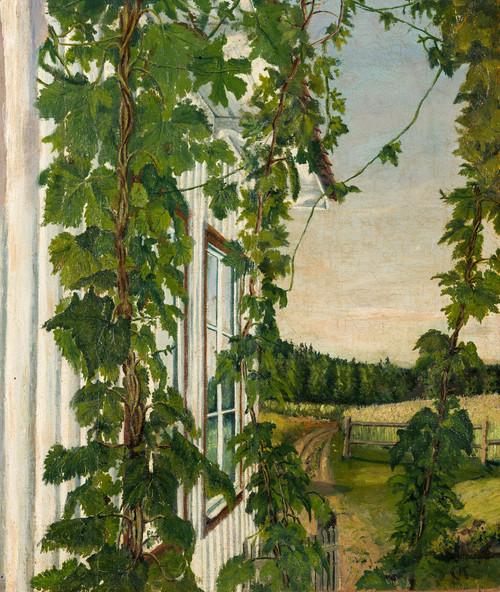 Utsikt fra et vindu med grener av en humleplante utenfor