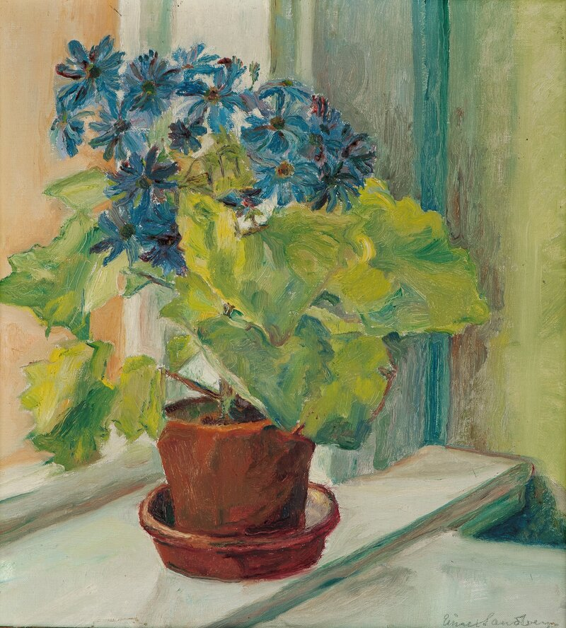 Blomster i potte