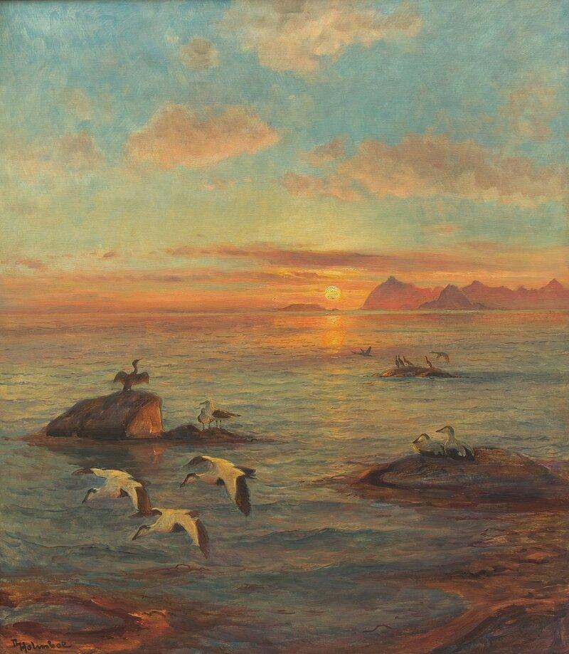 Sjøfugler på skjær
