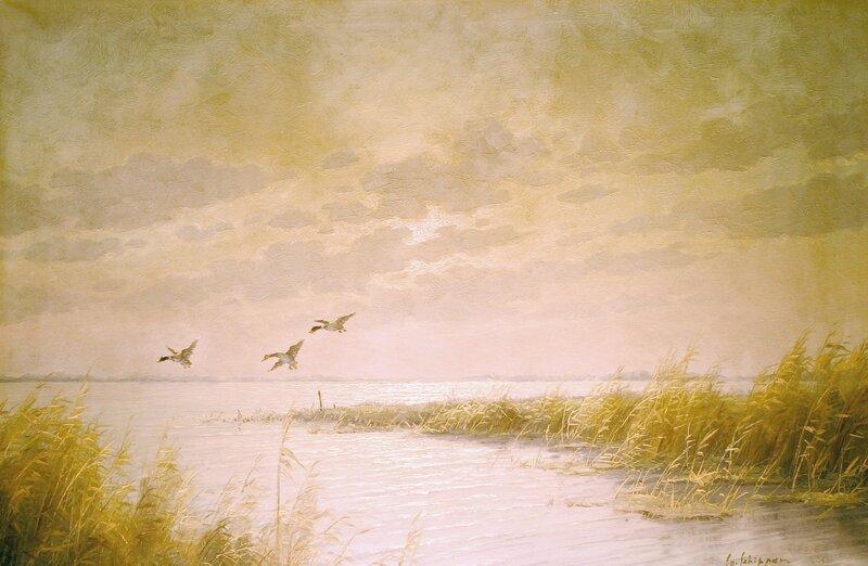 Flygende ender over innsjø