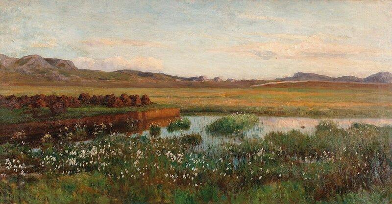 Torvmyr 1911