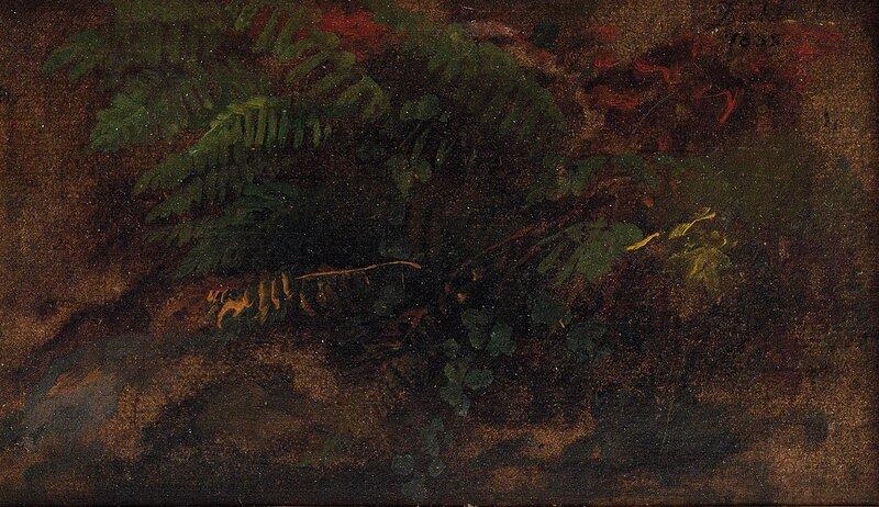 Studie av bregner 1832