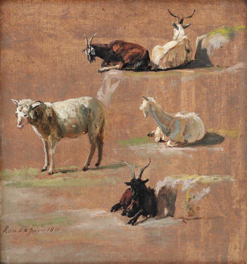 Studie av geiter og sau 1821