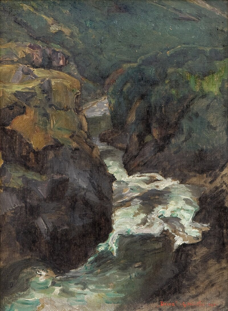 Fra Driva 1895