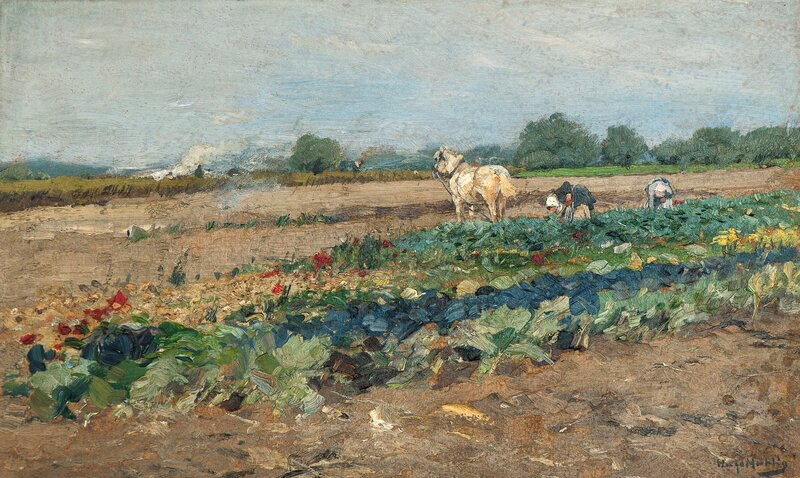 Field with two women and a horse