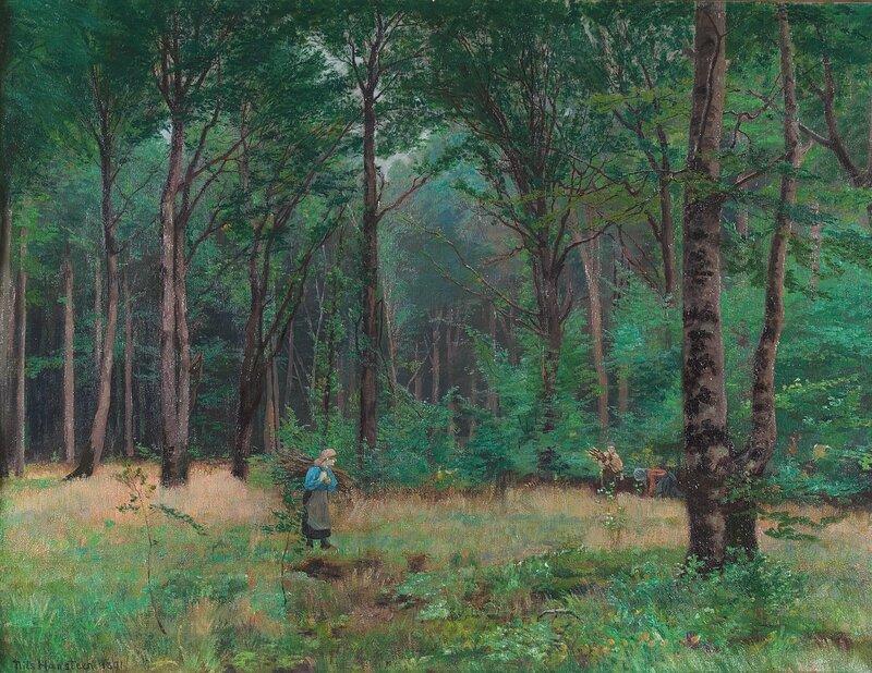 Dansk bøkeskog 1891