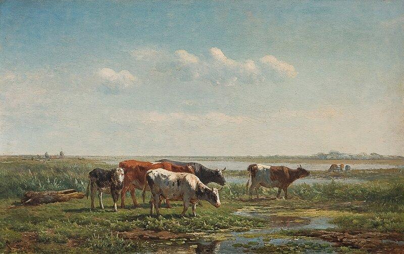 Kyr ved vanningssted