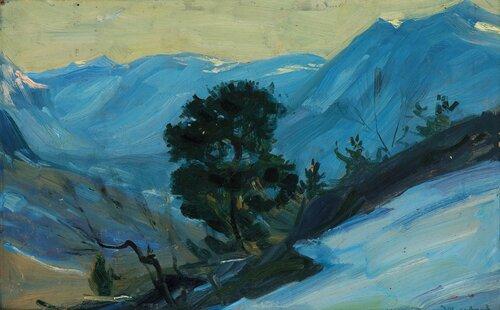 Furu i vinterlandskap, Nord-Gudbrandsdalen