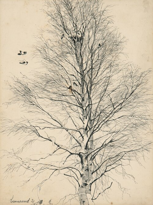 Birch Trees with Magpies, Winter 1878