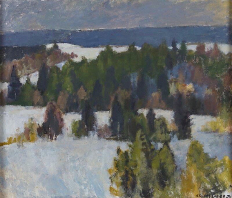Vinterlandskap 1976