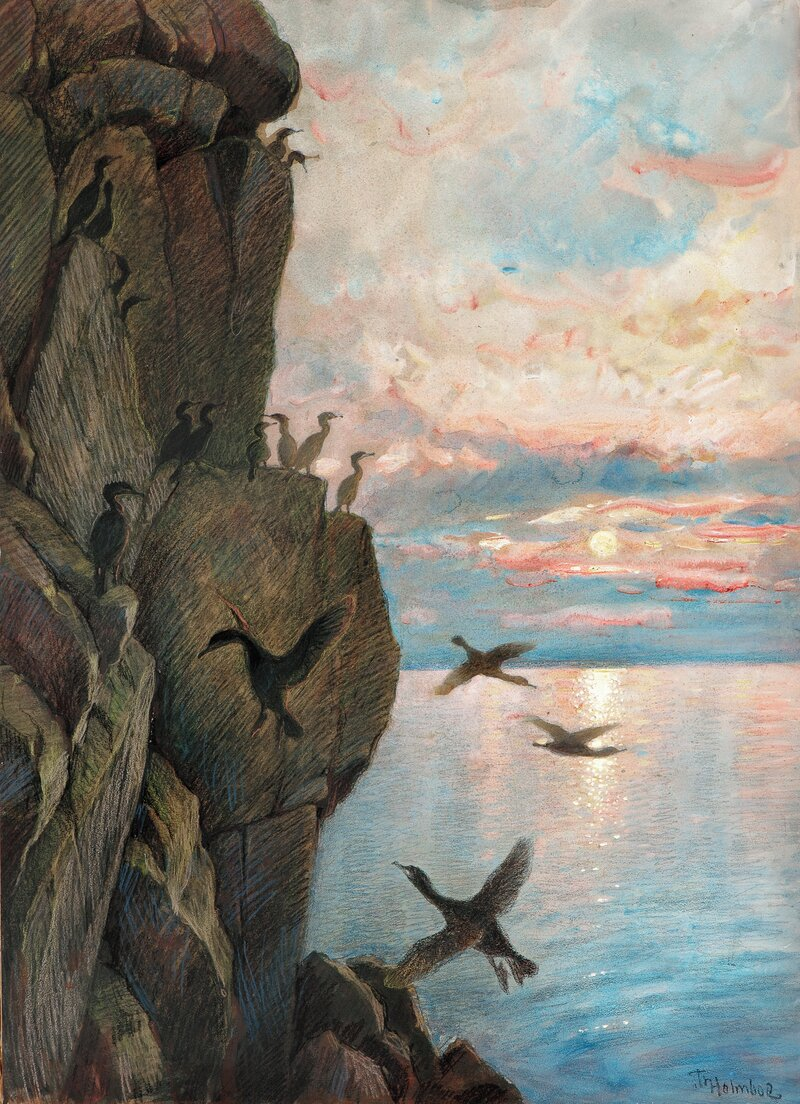 Fuglefjell, Røst