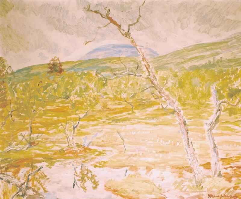 Myr under fjellet 1956