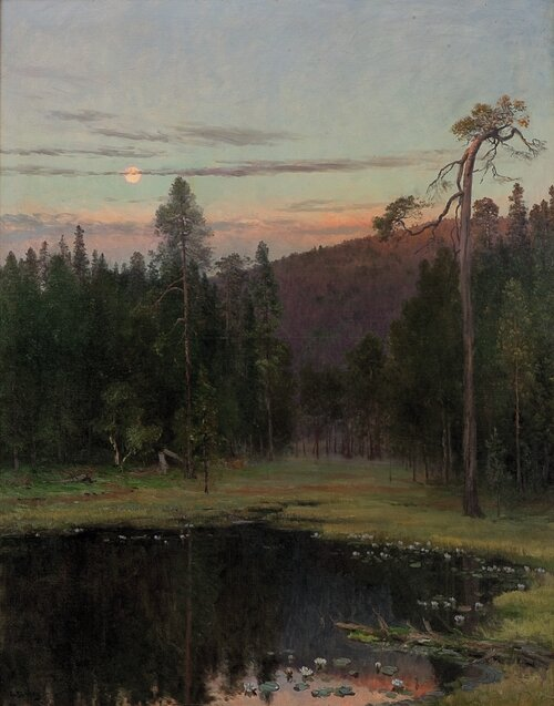 Evening by a pond