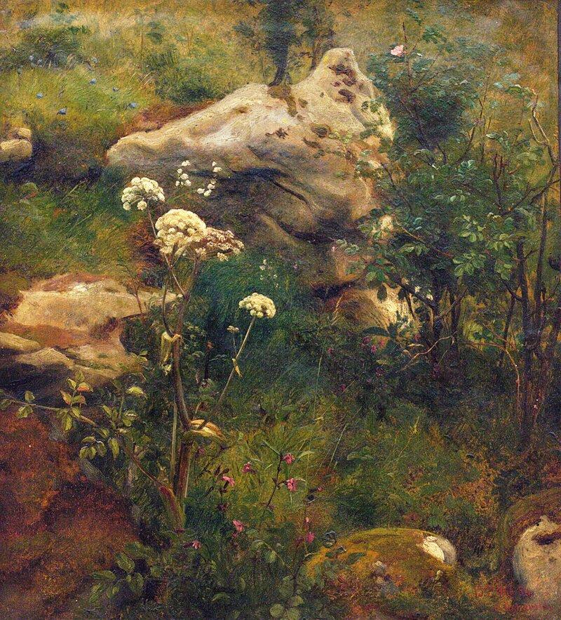 Studie av stein, rosenbusk og markblomster 1856