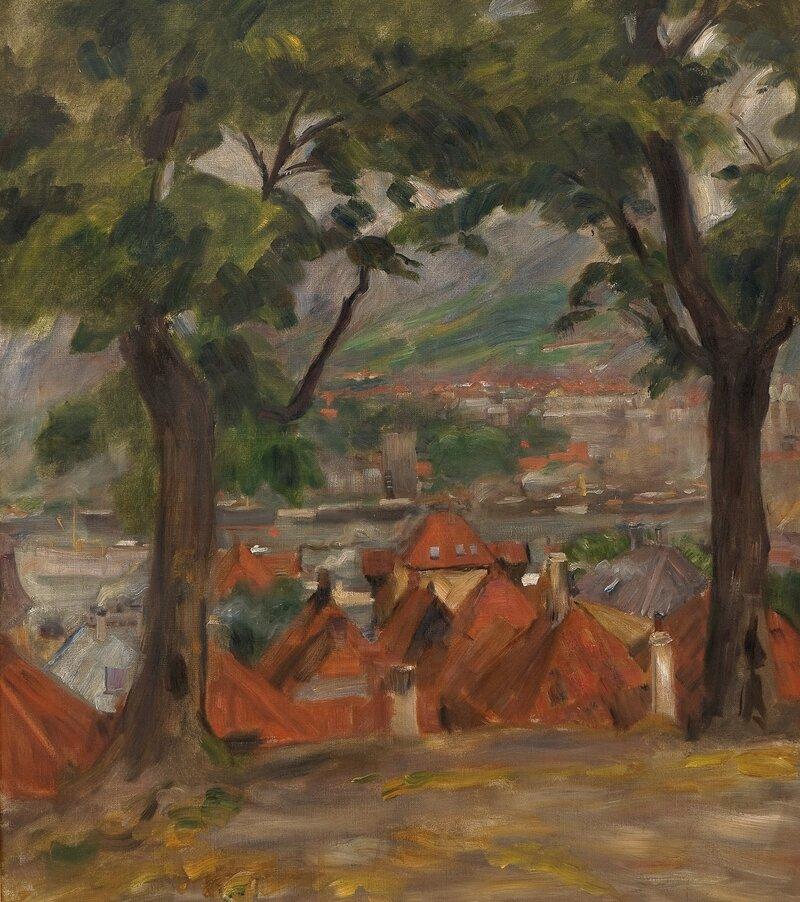 Vågen i Bergen fra Klosteret