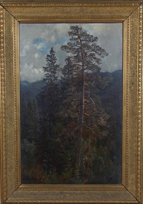 Skogstudie, Istad 1883