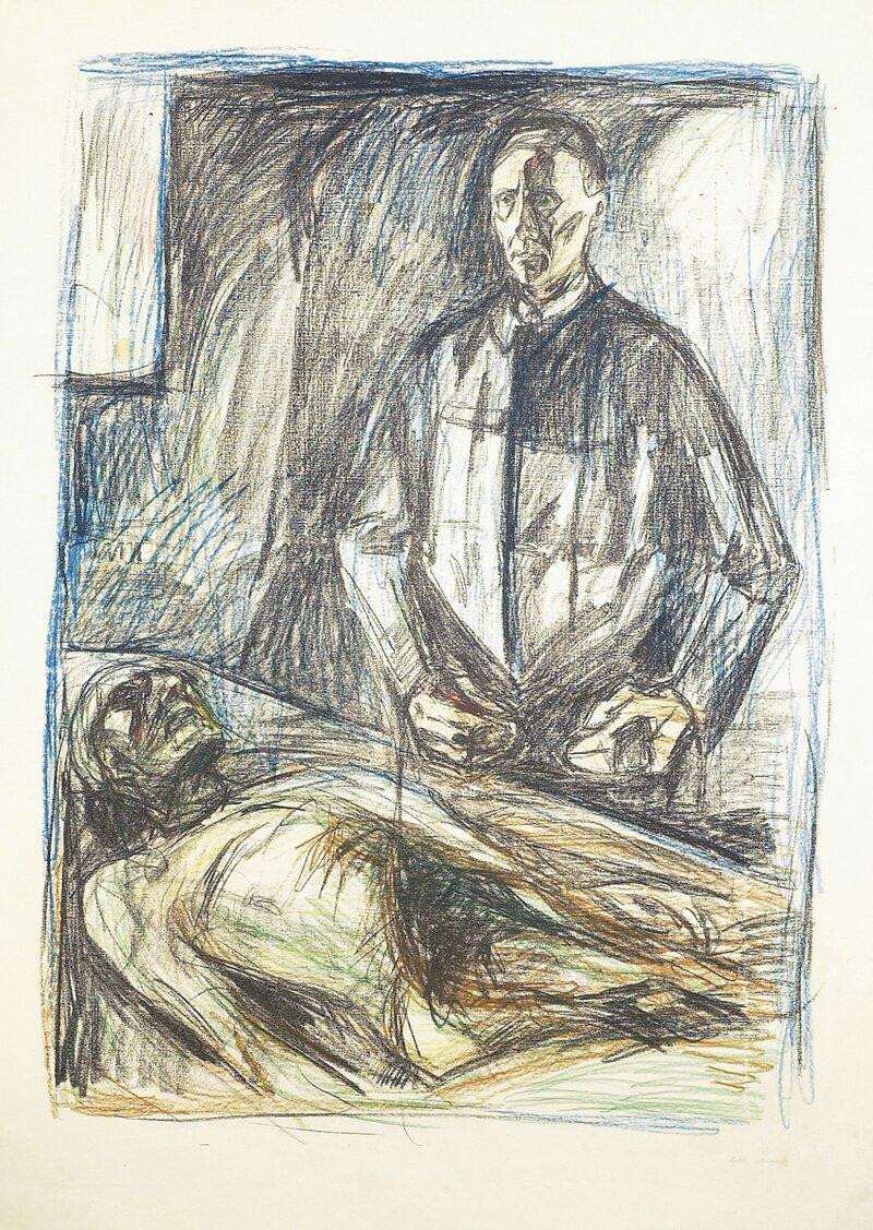 Anatomen Schreiner I